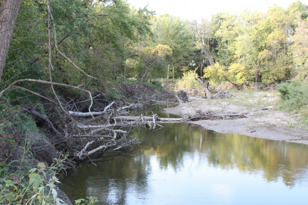 Across the watershed, streambanks are destabilizing due to high peak flows, and it's common to see downed trees blocking channels.